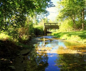 Creek-In-Ohio-Where-I-Grew-Up